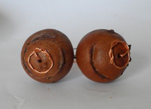 Orechhini galle di quercia fondo