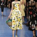 dolce-and-gabbana-summer-2016-women-fashion-show-runway-16-1600x2400